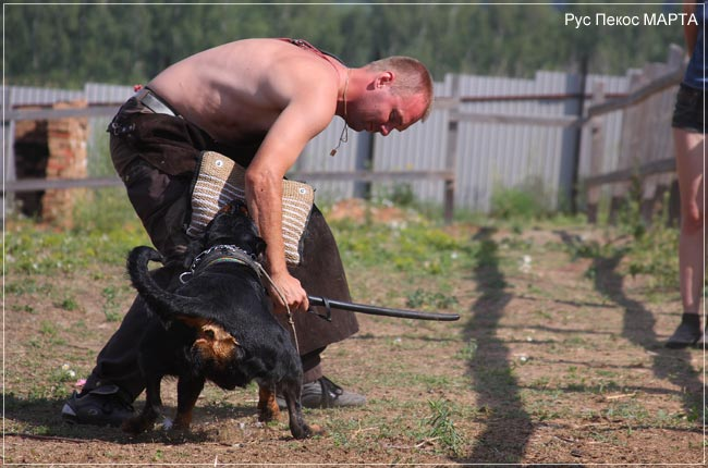 Рус Пекос МАРТА тренинг с Павлом Зоркиным